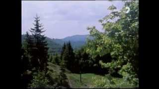 getlinkyoutube.com-Cez Karpaty 01 - Chodníčkami Veľkej Fatry