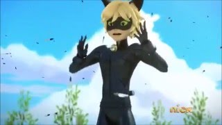 getlinkyoutube.com-Chat Noir Sneezing Montage (English)