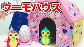 うまれて! ウーモ ダンボールのお家 / Hatchimals Hatching Egg and Cardboard House