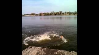 getlinkyoutube.com-Вот как надо купаться с девушками)))
