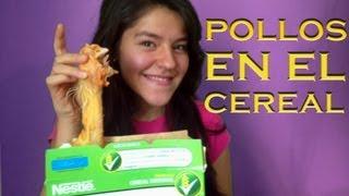 getlinkyoutube.com-Pollos muertos en el cereal | LOS POLINESIOS BROMAS PLATICA POLINESIA