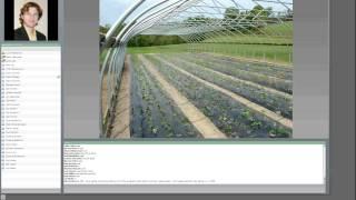 getlinkyoutube.com-Strawberry Production