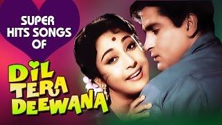 Dil Tera Deewana Hindi Songs Collection - Shammi Kapoor   Mala Sinha   Lata Mangeshkar