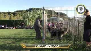 XV EDICIÓN PRUEBAS DE TRABAJO CEPPC
