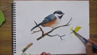 getlinkyoutube.com-How to paint a bird in watercolor,watercolor painting for beginners