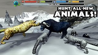 getlinkyoutube.com-Snow Leopard Simulator By Gluten Free Games Compatible with iPhone, iPad, and iPod touch.