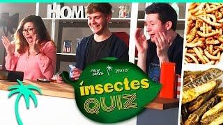 getlinkyoutube.com-Qui mangera des insectes ? Quizz avec Noël, Horia et Alex !