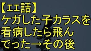 getlinkyoutube.com-【エエ話】ケガした子カラスを看病してやったら飛んでった→その後
