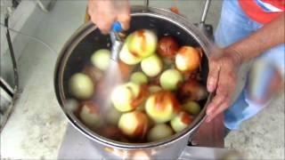 getlinkyoutube.com-Onion Peeling Machine - Ming Engineering Pte Ltd