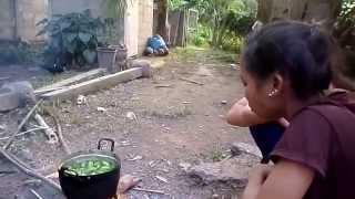 getlinkyoutube.com-แกงมะกะดอม ลาวเทิง