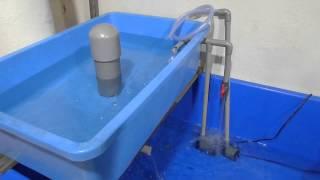 getlinkyoutube.com-Basic Aquaponics - Siphon Water Test