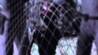 getlinkyoutube.com-ufo videos Brazilian military captured aliens