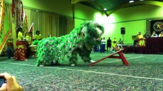 getlinkyoutube.com-LoKF Lion Dance - 1st Place - Houston Shaolin Academy