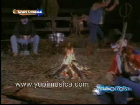 Payaso de Rodeo - Caballo Dorado