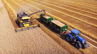 getlinkyoutube.com-Mähdrescher New Holland CR9070 - Trecker T7.270 - Direktbeladung - Weizenernte wheat harvest