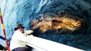 getlinkyoutube.com-EPIC EXTREME FISHING - BIG MAN CATCHES BIG FISH - FISHING BIG FISH FLORIDA