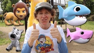 Matt Sings At The Park | Baby Shark, What Do You See? | Learn Colors, Wild Animals