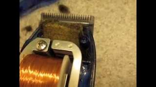 getlinkyoutube.com-Blades are NOT moving HOW TO Fix a broken Hair clipper Wahl Conair Maintenance