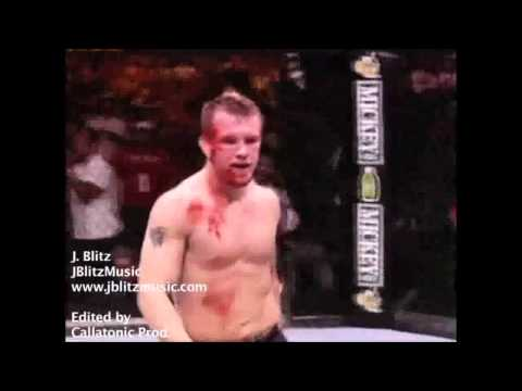 UFC Knockouts 2013
