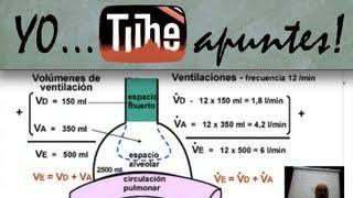 getlinkyoutube.com-Fisiología del sistema respiratorio. Ventilación alveolar.