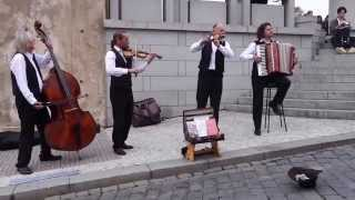 getlinkyoutube.com-Prague Street Musicians -  Josef Kocurek and the Prague Castle Orchestra