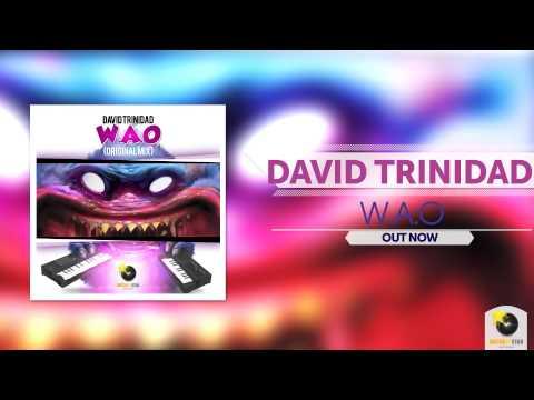 David Trinidad - W.A.O (Original Mix) ®