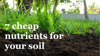 getlinkyoutube.com-7 Super Cheap ways to add Nutrients to your Soil