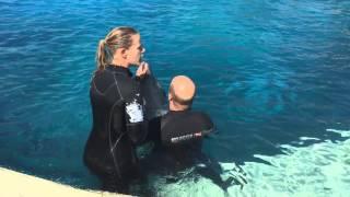 Ο Μάρκος Σεφερλής κολυμπάει με δελφίνια!