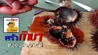 getlinkyoutube.com-หอยเม่น ซาซิมิ