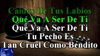 karaoke  Como Un Lobo  Miguel Bose