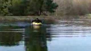 getlinkyoutube.com-PONDEROUS BIGFOOT ENCOUNTER - SASQUATCH SIGHTING CAUGHT ON VIDEO