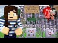 Hostile Wolf Shelter! - One Life Minecraft SMP Ep.16