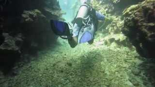 getlinkyoutube.com-Scuba Diving Jamaica Caribbean 2014