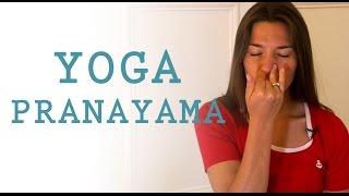 getlinkyoutube.com-Yoga Pranayama : exercices de respiration alternée