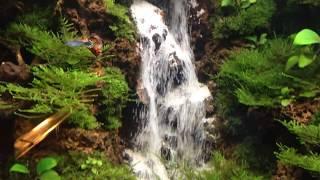 Waterfall Aquascape