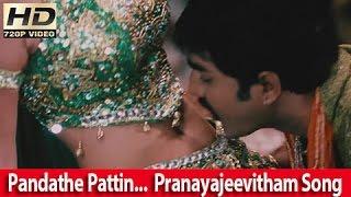 Pandathe Pattin ... Sadha & Srikanth Romantic Song From - Malayalam Movie - Pranayajeevitham [HD]