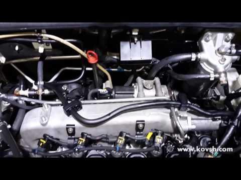 Расположение у FIAT Scudo топливного фильтра