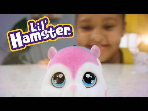 Little Live Pets - Lil' Hamster S1 Single Pack - Assorted*