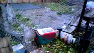 getlinkyoutube.com-Hurricane sandy DAMAGE!!!!!! Paterson N.J