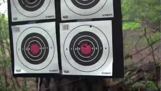 Bersa Thunder vs Sig Sauer P238--Accuracy