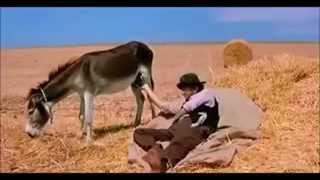 getlinkyoutube.com-Hillarious!!! Man telling time by touching Donkey's balls!!!