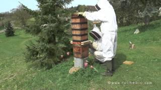 getlinkyoutube.com-Japan Beute mit dem Warré Lift erweitern - traditional japanese bee hive