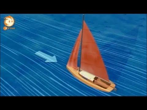 Löwenzahn - 254 - Segeln -- Rivalen im Wind
