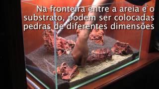 getlinkyoutube.com-Beach Cliff - ADA 60 cm Aquário Passo-a-Passo (versão portuguesa)