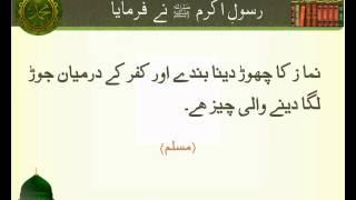 Namaz ka Chor Dena | Hadees | Sahih Muslim | HD