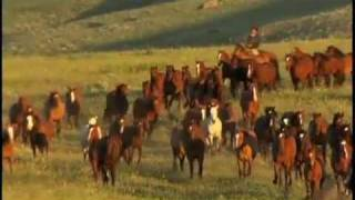 getlinkyoutube.com-A Tribute to Ranching and the American Quarter Horse