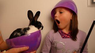 "getlinkyoutube.com-Giant Surprise Bunny Eggs ""Victoria & Annabelle Toy Freaks"""