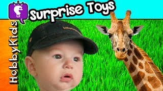 HobbyBaby ZOO Surprises! Feeding Giraffes + Train Ride, Elephants HobbyKidsTV