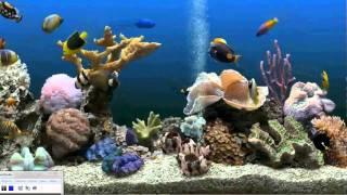 getlinkyoutube.com-How to get an Aquarium as your Desktop Background (Xp, Vista, Windows 7)