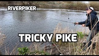 Catching tricky pike - (video 169)